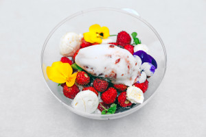 «Coupe fraise des bois»